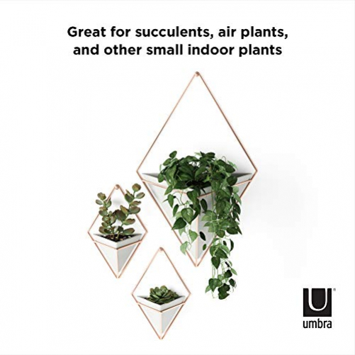 Umbra Trigg Wall Vase & Geometric Decoration - Cachepot For indoor plants, succulents, aerial plants, cacti, artificial plants and more, metal, concrete/copper, small, 2