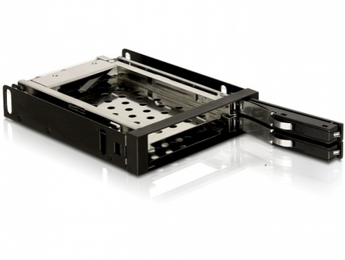"DeLOCK 3.5"" Mobile Rack"